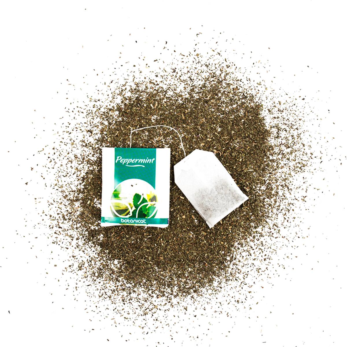 Seria Catering BotanicalCeai verde- 100 buc. de plicuri